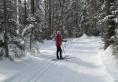 Lapland Lake 17