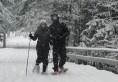 Lapland Lake 22